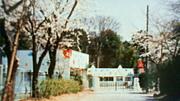 まどか幼稚園(埼玉県.越谷市)