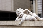09 天使看護学科