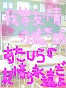 ゚+☆トフルっ子☆夏in2008☆+゚