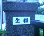 隣の生稲さん