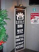 SOUND BAR LITTLE BIRD