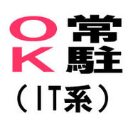 常駐OK(IT系)