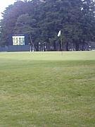 埼玉ゴルフ委員会