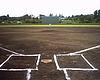 平日に草野球をしよう!!