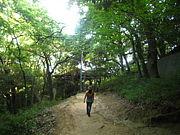 神戸CHOUTARA歩く会(仮)
