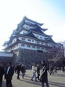 学生サークル in名古屋