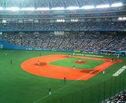 ♡野球的恋愛♡