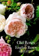 Old Roses & English Roses