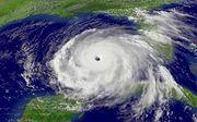 ネットで見かけた台風実況