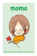 cashew momo