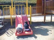 幼稚園☆小学生のママの会