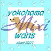 横浜ワンズ