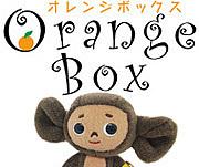 チェブ専門店 オレンジボックス