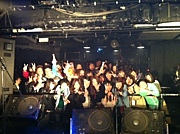 THE TURTLE HEADS 京都