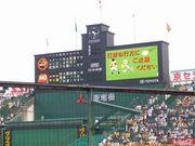 福岡の阪神タイガースファン