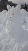 SnowBoardTeam ☆雪達磨☆