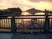 日本ライン付近の自転車乗り!