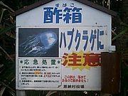沖縄のこと、教えます!