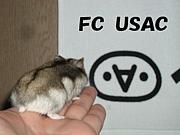FC USAC