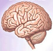 岐阜脳卒中リハビリテーション