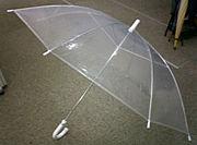 ビニール傘に失望させられたよ。