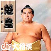 [dir]大相撲