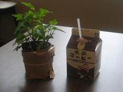 木次コーヒー牛乳