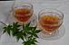 サポニン茶ダイエット