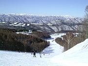 スキー行こう!20・30代都内周辺