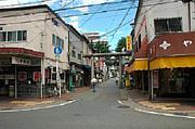 盛岡・桜山