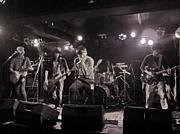 D.V (バンド)