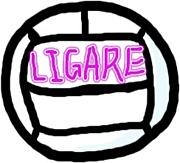 バレーボールチーム【LIGARE】!!