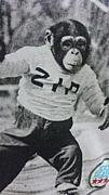 日法サッカー部09年入部組