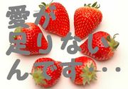 ◆愛に飢えてますケド?◆