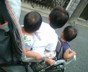年子+双子