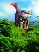 八王子に住む沖縄県民