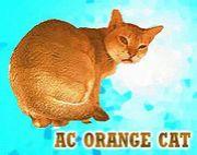 A.C.オレンジキャット