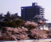 関東福山人の集い