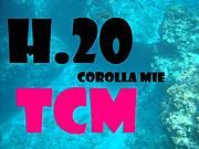 TCM三重