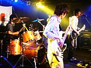 ♪NEWT♪