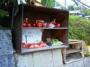 長岡京市の野菜とお米を愛する会