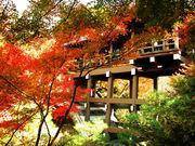 京都を思う存分語る会