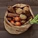 長野県北信で野菜を作ろう