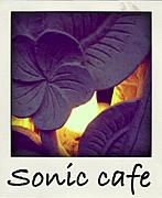 Sonic cafe★音速珈琲廊