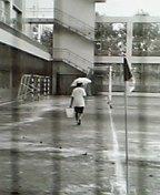 ★晴海乙女蹴球部★