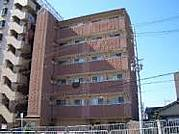 畿央大学2012年新入生