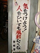 we are特企 2008