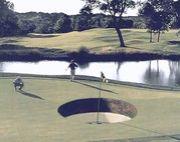 レッスン上尾のゴルゴルゴルフ