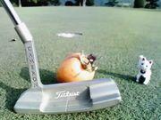ゴルファー継続…1・3・5♪