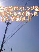 【2007】明治大学政経17組